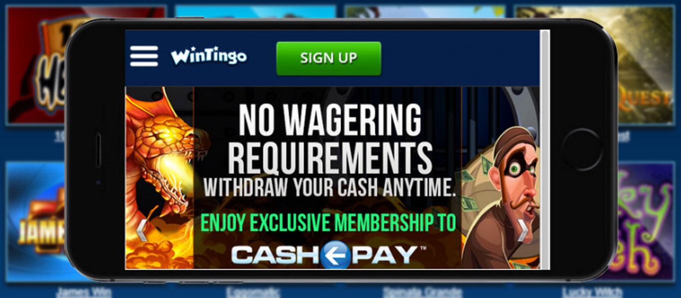 Netti Kasinot Cashpot